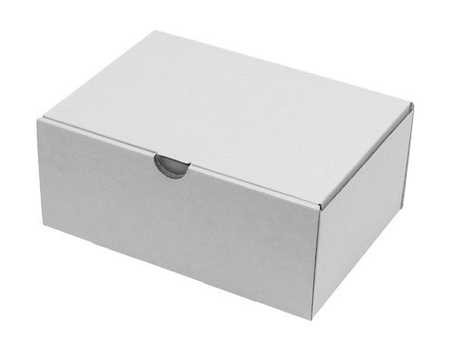 Karton12-geschlossenWEB