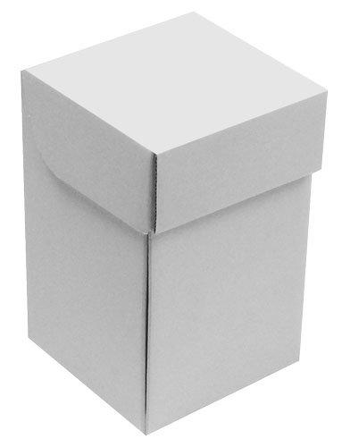 Karton13-geschlossenWEB